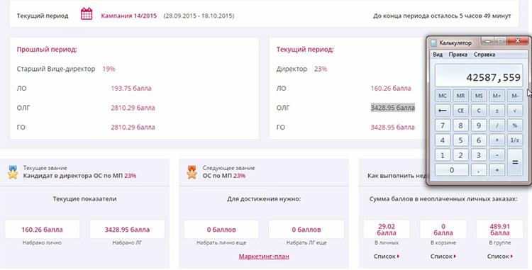 Окно данных для расчёта вознаграждения от компании FABERLIC на структуру консультанта